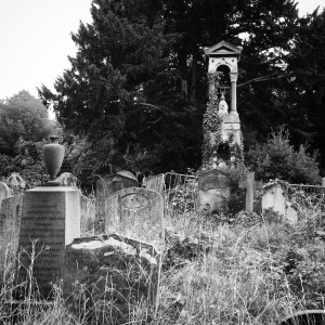 Overgrown Brompton
