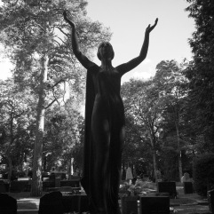 High contrast days: dark statues, light background