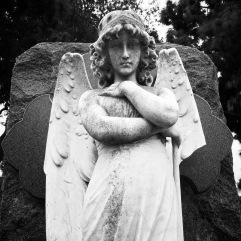 Copy 2: Woodlawn Cemetery