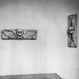 Minimalist skulls