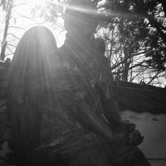 Sunny days can lead to flare and poorly lit statues, especially when shooting up