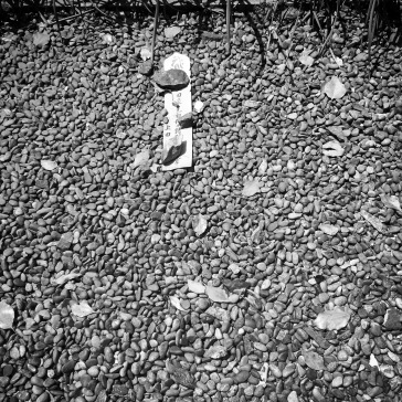 Lonely marker