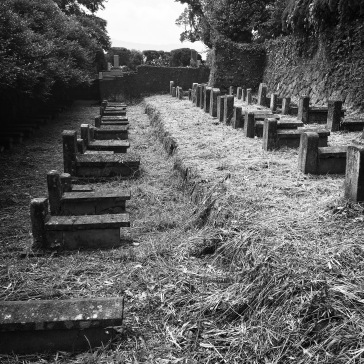 The old Chinese cemetery, I think.