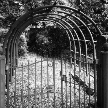 Gate to older, overgrown area