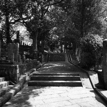 The path through the cemetery