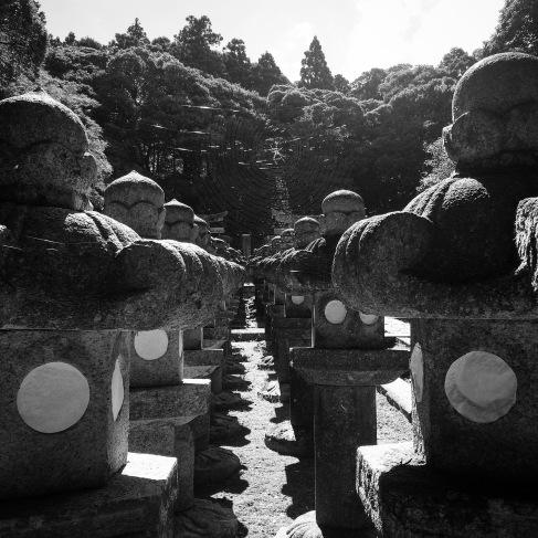 Rows of lanterns