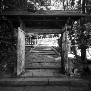 The cemetery beyond the gate