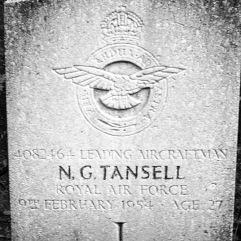 Royal Air Force: N.G. Tansell (27)