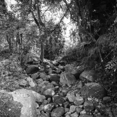 Some sections of the cemetery have small streams running through them