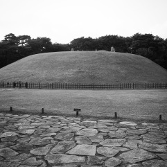 King Jungjong's tomb, from afar