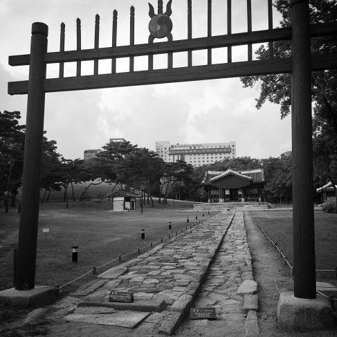The walk to King Seongjung's tomb
