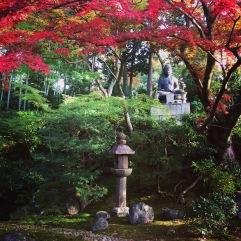 Another small garden, somewhere between Kurodani and Shinnyodo Temples