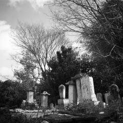 Forgotten cemetery in the Hanazono area
