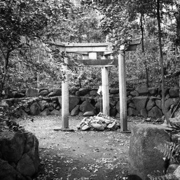The very unusual three-legged torii