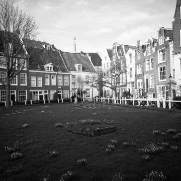 The Begijnhof courtyard.