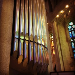 Even the organ reflects some colours