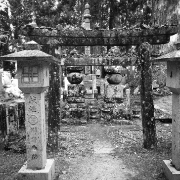 Stones on the torii gate