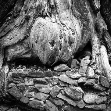 Wood meet stone