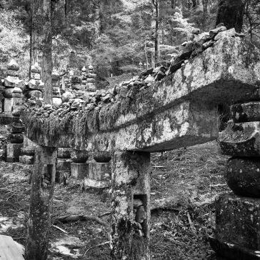 Mossy stoney gate