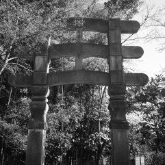 Triple torii