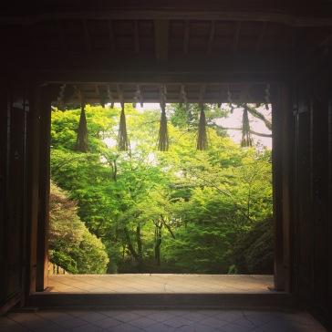 Gate, beyond lies the staircase