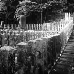 The stone fense