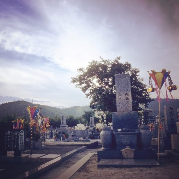 Colourful lanterns for all the ancestors
