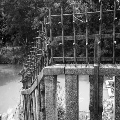 Fenced off areas of the moat