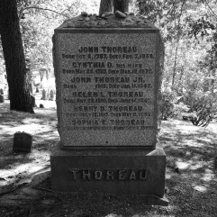 Thoreau family grave