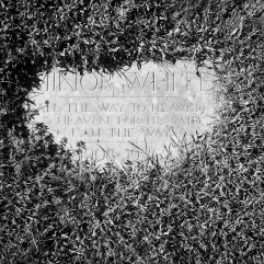 Final resting place of Minor White, photographer