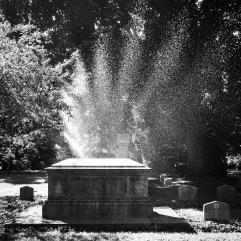 Backlit sprinkler