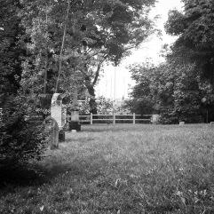 The cemetery 1