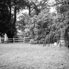 The cemetery 2
