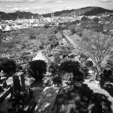 Looking down into the main cemetery