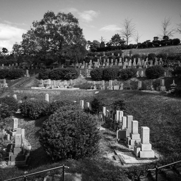 Another view of the cemetery