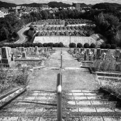 Cemetery symmetry
