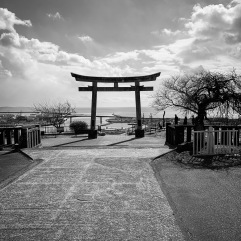 The sea beyond the shrine. The tsunami was 20 meters high, so was this shrine. The buildings lay damaged behind me.