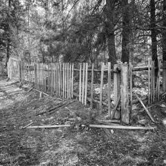 Fence in need of repair