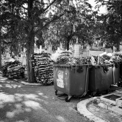 Discarded floral wreaths (many funerals today)