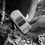 A hotspot at the base of a tree near the elementary school. This was one of the highest readings we would get