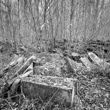 The grove of headstones