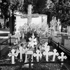 Many crosses