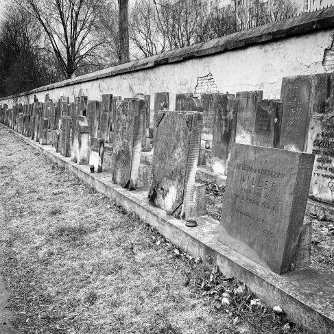 Row of headstones