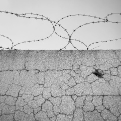 Barbed wire and bullet hole